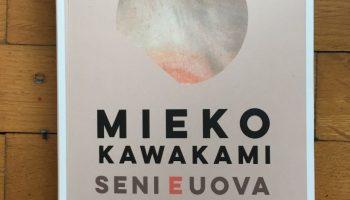 SENI E UOVA di Kawakami Mieko: una sorpresa